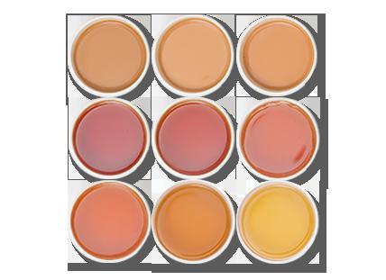 Halamri-tea-Cups