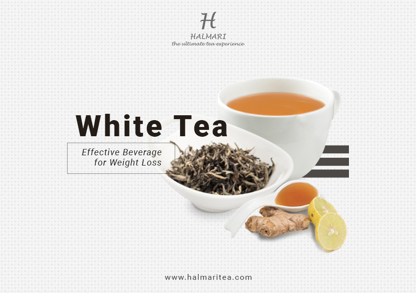 White Tea Effective Beverage For Weight Loss