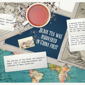 History of Orthodox Black Tea