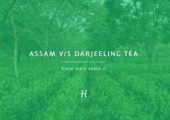Know Your Tea: Assam v/s Darjeeling