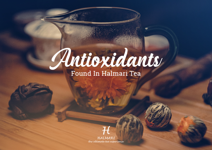 antioxidant found in tea