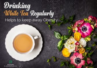 Two Cups of White Tea Everyday may keep Obesity Away