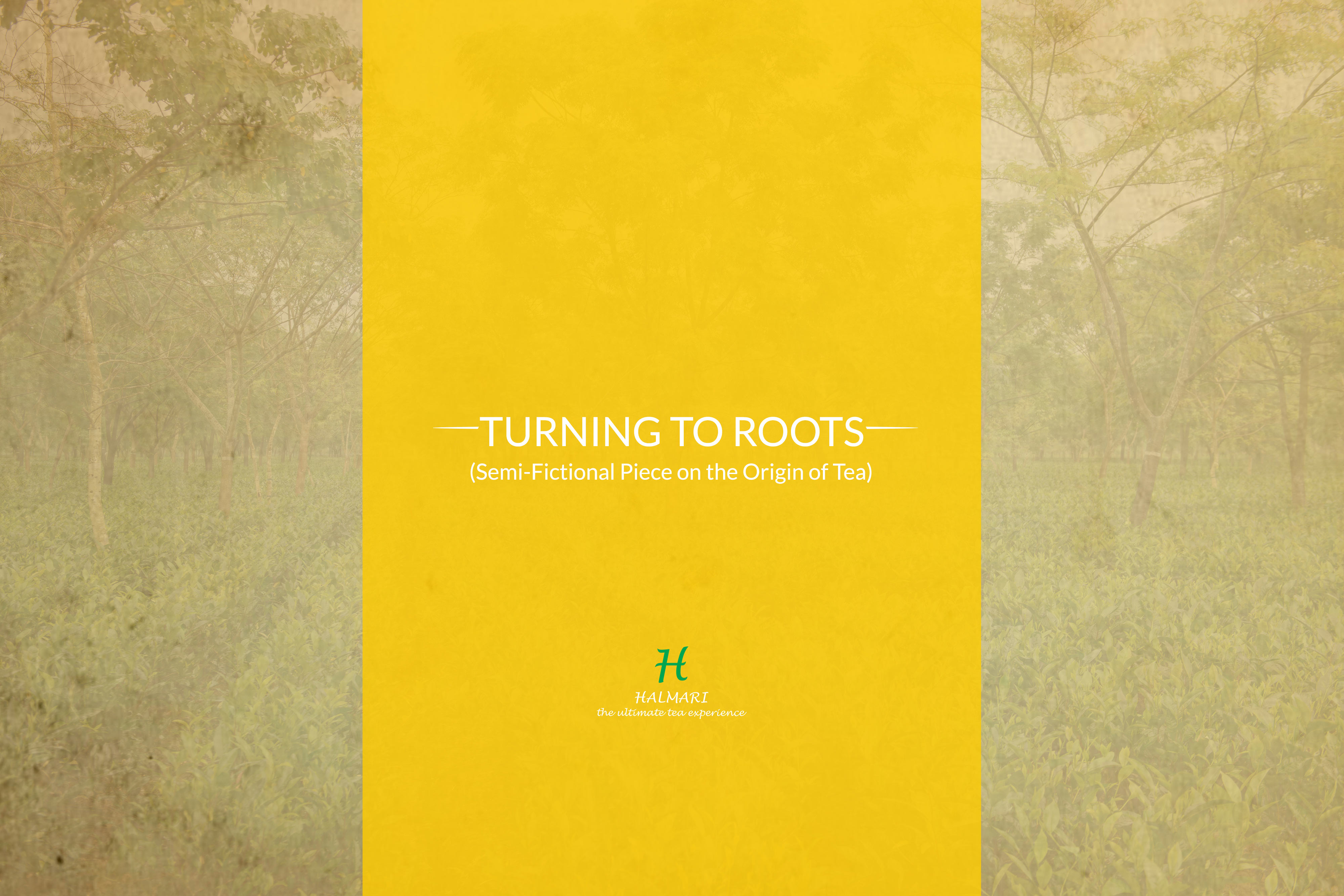 turning to roots blog