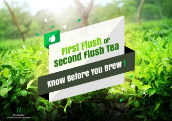 First Flush or Second Flush Tea – Know Before You Brew!