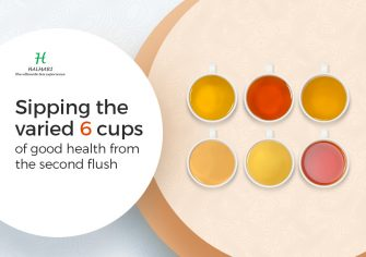 Sipping the Varied 6 Cups of Good Health from the Second Flush!