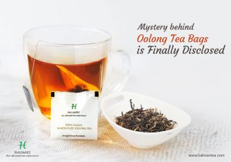 Mystery behind Oolong Tea Bags is Finally Disclosed!