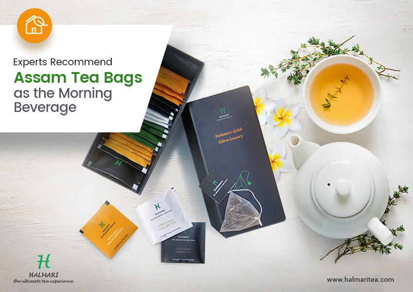 Why Do Experts Recommend Assam Tea Bags as the Morning Beverage?