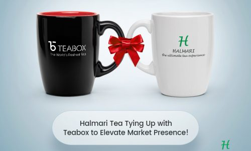 Halmari Tea Tying Up with Teabox to Elevate Market Presence!