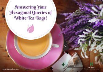 Do Your Grey Cells Wake Up to These White Tea Bags Queries