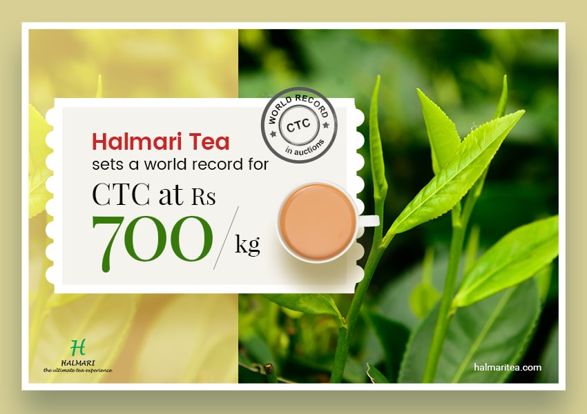 Halmari Grabs Record Amount of Rs.700/kg at Calcutta Auctions