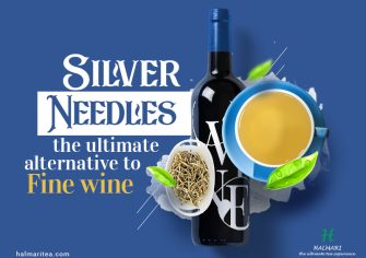 What Makes Silver Needles the Fine Wine of Tea Industry?