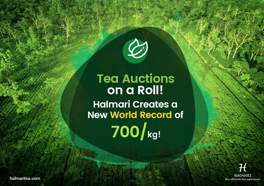 Bidders across the Globe Set World Records at the Spring Tea Auctions, 2018!