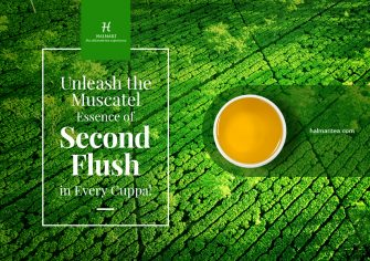 Why Would You Choose Second Flush Tea? Facts & Insights!
