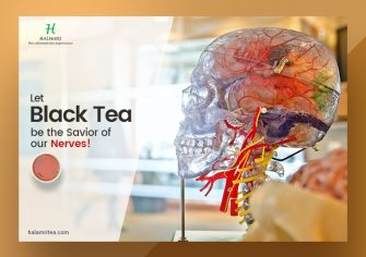 Order Black Tea Bags Online to Lower the Chances of Neurological Diseases