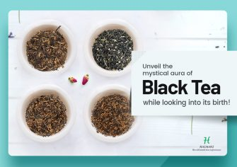 How Did the Elusive Black Tea Bring a Revolution to the World?