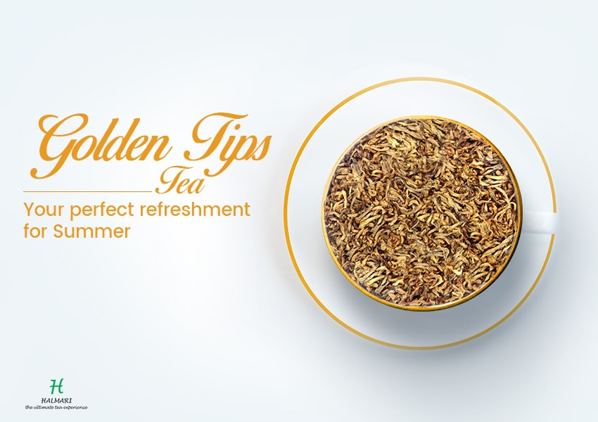 Golden Tips Tea – Some Essential Facts to Know About this Unique Beverage