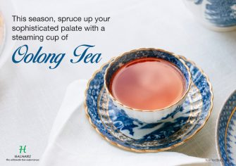 Looking For Best Hand-Rolled Oolong Tea Online In USA? Keep Few Things in Mind