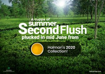 Get Summer Second Flush Tea from Halmari's 2020 Collection for a Cheerful Start to Mornings