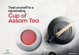 Interesting Facts about Tea Plantation in Assam