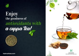Everything to Know About Antioxidants in Tea