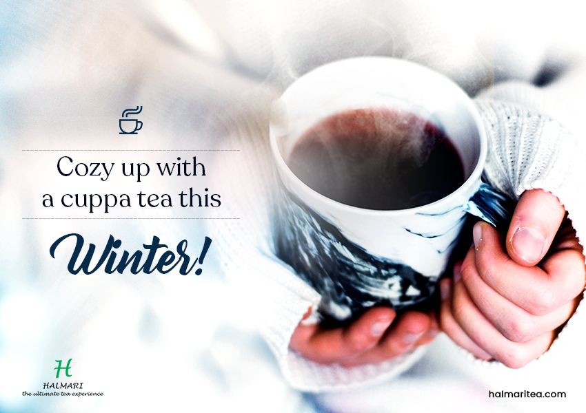 A Cup of Tea to Stay Warm and Healthy This Winter