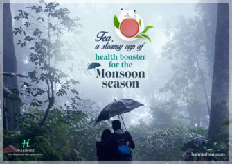 Which Teas To Drink In Monsoon To Stay Healthy?