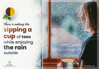 Tea – A Beverage To Sip On During Monsoon To Remain Healthy